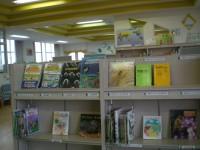 速見小図書館2.JPG