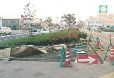 寝屋川大東線植栽4.jpg
