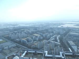 2010.12.18公営住宅群.jpg