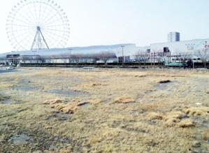 未活用の土地 (640x468).jpg